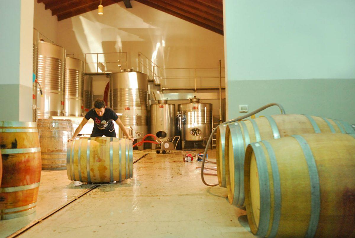Cata de vinos de Fazenda Prádio